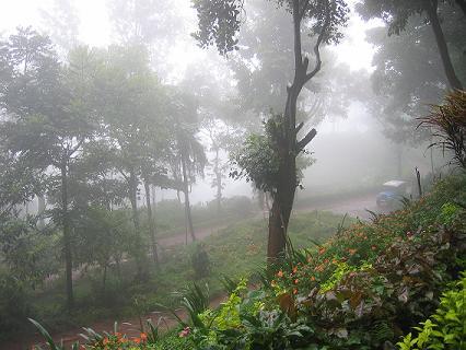Kemmangundi_fog
